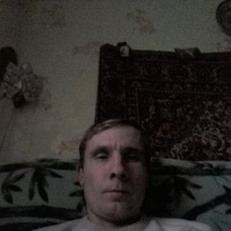 александр, 37 лет, Красный Холм