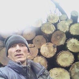 владимир, 28 лет, Кинель-Черкассы