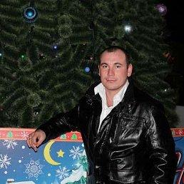 Павел Кисель, 37 лет, Новочеркасск
