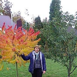 Татьяна, 55 лет, Бердичев