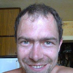 Константин, 35 лет, Александрия