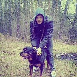 Саня, 23 года, Коцюбинское