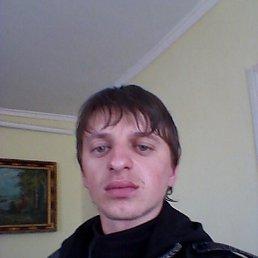 Міша, 33 года, Кременец