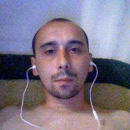 Артур, 28 лет, Нетешин