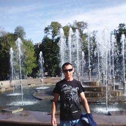 Алексей, 30 лет, Геническ