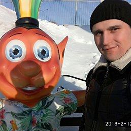 Игорь, 27 лет, Пожва