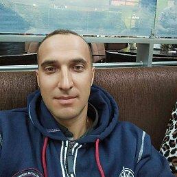 Alexandr, 33 года, Новомосковск