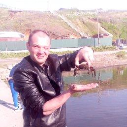 антон, 36 лет, Черепаново
