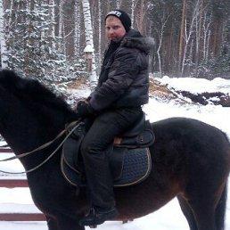 Александр, 29 лет, Сурск