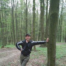 Александр, 37 лет, Зачепиловка