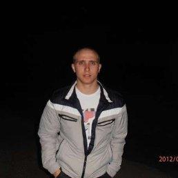 Кирюшкин Юрий, 29 лет, Инза