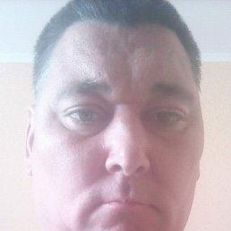 Roman, 45 лет, Червоноград