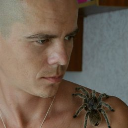 Александр, Курск, 34 года