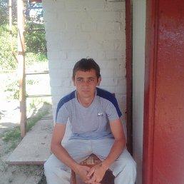 Сергей, 31 год, Гребенка