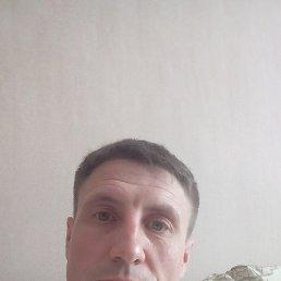 Алексей, 42 года, Шаховская