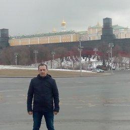 Александр, 42 года, Заокский