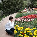 19.04.18 выставка тюльпанов в НБС