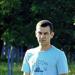 Антон, 33 года, Киров