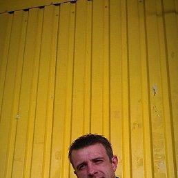 Макс, 36 лет, Теплогорск