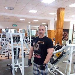 Владимир, 41 год, Курлово