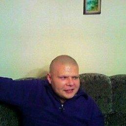 Vitaliy, 40 лет, Сосновка