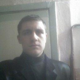 Никита, 28 лет, Никель