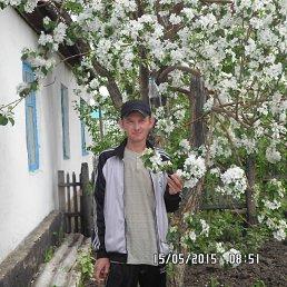 Виталий, 32 года, Родино