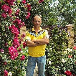 Сергей, 49 лет, Рени