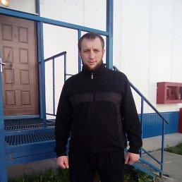 Виктор, 33 года, Салаир