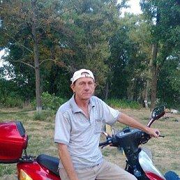 Петро Петрович, 63 года, Александрия