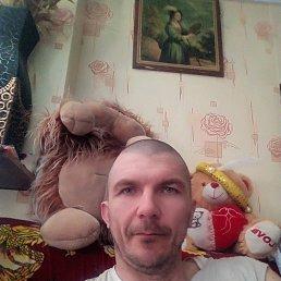 Виталя, 45 лет, Белокуриха