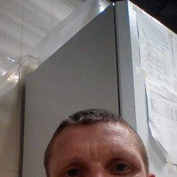 Александр, 41 год, Таганрог