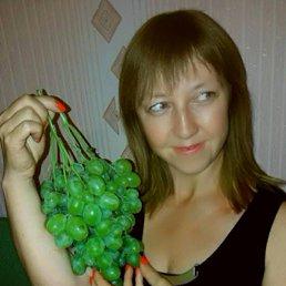 Юлия, 43 года, Кировоград