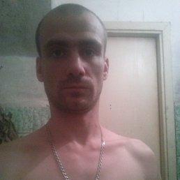 Алексей, 27 лет, Великий Новгород