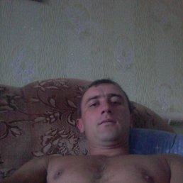 сергей, 35 лет, Волчиха