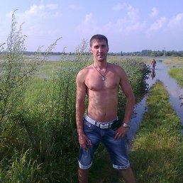Геннадий, 46 лет, Дорогобуж