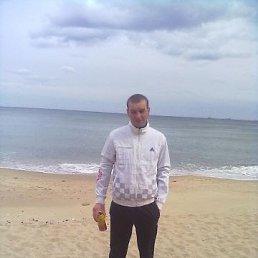 Олег, 32 года, Лановцы