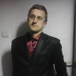 Сергей, 29 лет, Смела