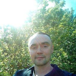 Александр, 36 лет, Вад