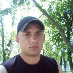 Миха, 35 лет, Белополье