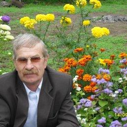 Николай, 65 лет, Пола