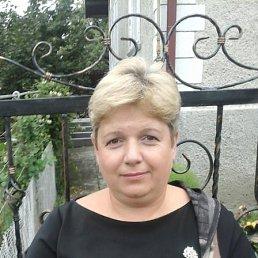 Марійка, , Дрогобыч