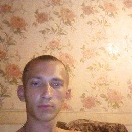 Артём, 26 лет, Зеленогорск