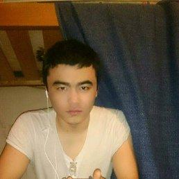 Tilek.Tilek, 24 года, Нахабино