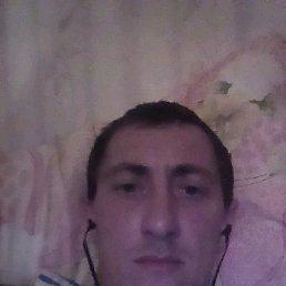 Андрей, 35 лет, Золотое