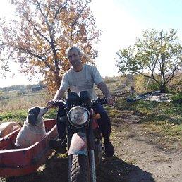 Александр, 37 лет, Райчихинск