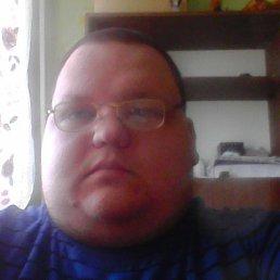 Виталий, 31 год, Новогорный