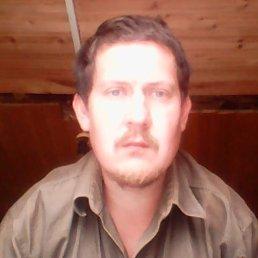 андрей, 34 года, Демидов