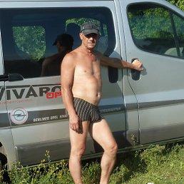 Сергей, 55 лет, Александрия