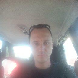 Дима, 33 года, Могилев-Подольский